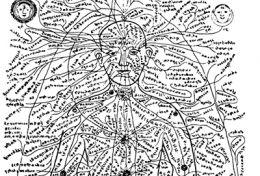 Dhamani e Sira (Teoria e pratica del Pranayama B.K.S.IYENGAR)